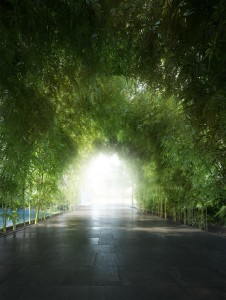 Waterfall_Bamboo_Walkway_Final (1)